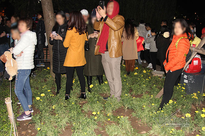 Vườn hoa hồ Gươm bị san trụi: So với năm ngoái, dân mình tiến bộ hơn