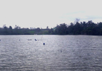 Vợ chồng trẻ chết bất thường: Người treo cổ, kẻ tử vong dưới hồ