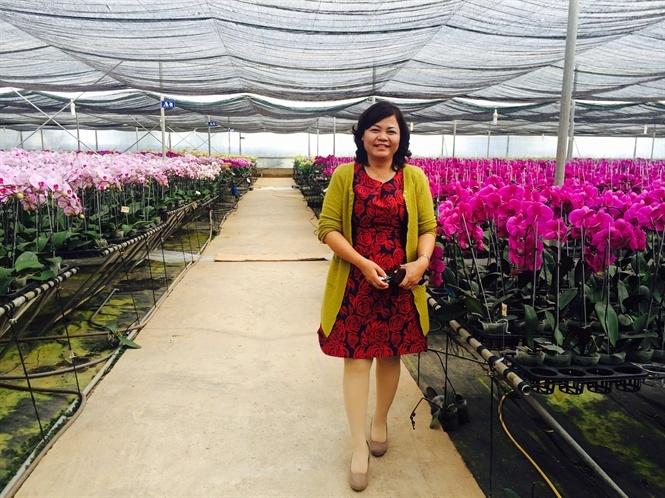 Bà thương lái Việt dám sang Trung Quốc mua cả 1 nông trường cam