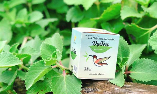 Ra mắt website đặt hàng trà thảo mộc giảm cân Vy&Tea