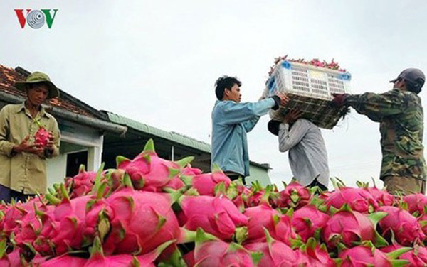 Nông nghiệp Việt Nam 2018: Xuất khẩu vào ASEAN giữ đà tăng trưởng