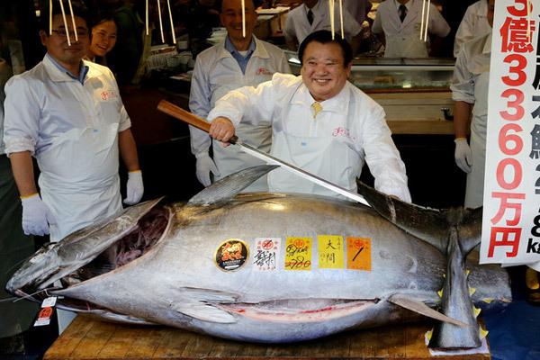 Cận cảnh con cá ngừ 'khủng', giá hơn 71 tỉ đồng