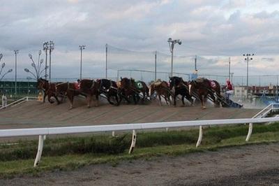 Xem đua ngựa 'chả giống ai' ở Nhật Bản
