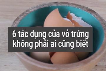 6 tác dụng bất ngờ của vỏ trứng không phải ai cũng biết