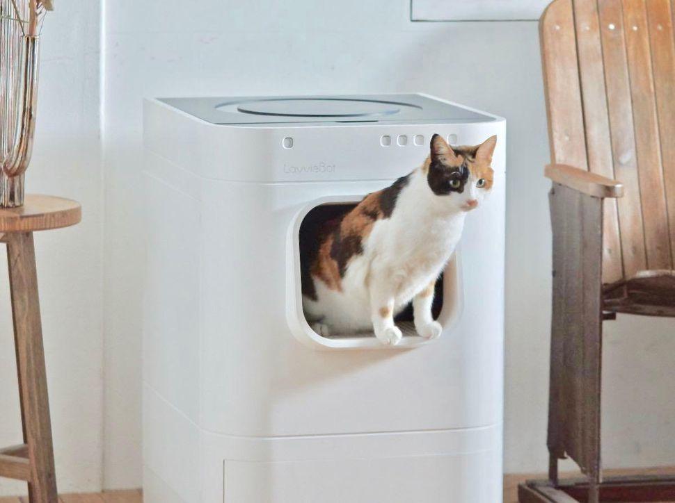 Thùng rác thông minh kiêm nhà vệ sinh tự động cho mèo
