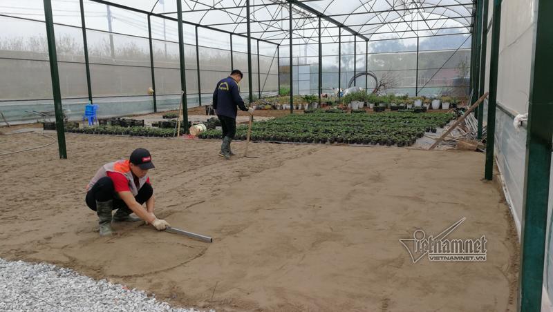Báo Vietnamnet.vn nói gì về Trang trại dâu tây Chimi Hà Nội