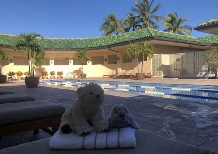 khách sạn,khu nghỉ dưỡng