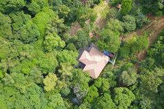 Bỏ biệt thự triệu USD Hà Nội: Đại gia về rừng ở ẩn, thanh lọc cơ thể