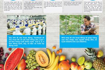 Cận cảnh nhà máy chế biến rau củ quả hàng đầu VN
