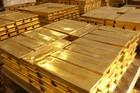 Thợ săn kho báu hoang mang tìm 80 tấn vàng của Hoàng đế Napoleon suốt 200 năm