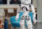 Nhật Bản thử nghiệm robot hỗ trợ người dân ở tòa thị chính
