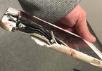 VIDEO: Đây là hậu quả của việc khi vừa sạc vừa dùng điện thoại