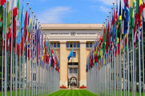Liên Hợp Quốc,quấy rối tình dục