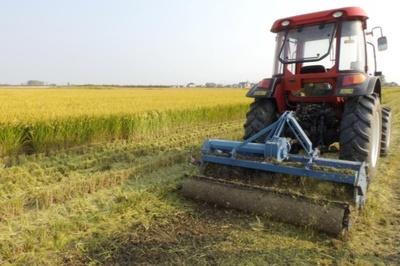 Cuộc 'cách mạng' tự động hóa nông nghiệp ở Trung Quốc