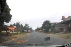 Cụ bà đang chạy băng qua đường đột nhiên bị ngã ngay trước mũi xe