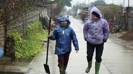 Dự báo thời tiết 21/1: Miền Bắc rét đậm, nhiều nơi mưa to
