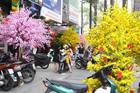 Mai, đào giả giá tới hàng chục triệu đắt hàng ở Sài Gòn