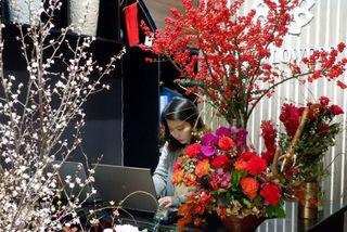 Cành hoa cây dại bên tây, đại gia Việt bỏ chục triệu chơi Tết