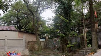 Trưởng thôn bị tố bán cành sưa trăm tỷ: Số tiền bán được đang ở đâu?