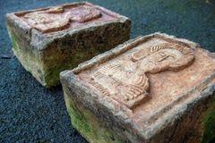 Khó tin: 2 tảng đá chỏng chơ ngoài vườn là báu vật trị giá 3 tỷ đồng