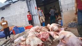 Món mồi đặc sản lợn chết nhậu với rượu vang rẻ như nước lã
