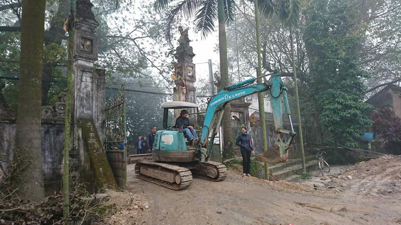 Hôm nay, chặt hạ cây sưa trăm tỷ ở Hà Nội sau 8 năm chờ đợi