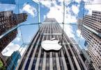 Apple bị phạt 440 triệu USD vì vi phạm bằng sáng chế