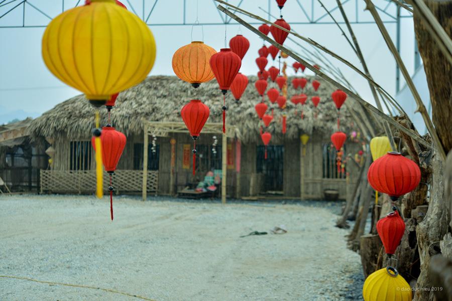 Điểm check in mới cho giới trẻ du xuân tại Ninh Bình