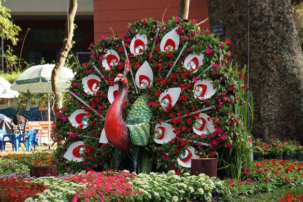 3.000 kỳ hoa dị thảo ở Hội hoa xuân lớn nhất Sài Gòn