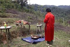 Lễ cúng thần rừng và điều lạ ở ngôi nhà của người Mã Liềng