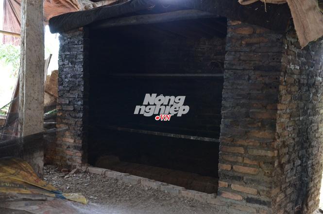Săn giun 'khổng lồ':  Mổ ruột, sấy khô bán sang Trung Quốc