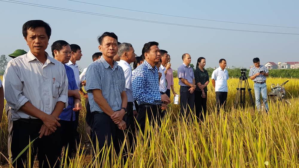 'Tôi muốn chữa bệnh nghèo cho nông dân'