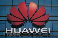 Đặc phái viên Mỹ tại EU: Khách hàng nên tránh Huawei vì lý do bảo mật