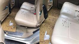 Gặp hành khách thiếu ý thức, tài xế taxi này ngán ngẩm khi hết chuyến