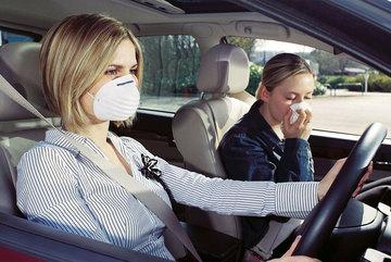 Bí quyết khử mùi tanh hải sản, gà vịt trên ô tô