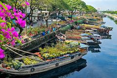 Chợ hoa Tết rực rỡ trên sông