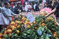 Khám phá chợ Tết ở Hong Kong
