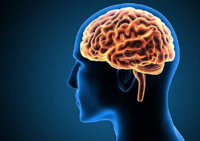 10 hiểu biết sai lầm về não bộ con người