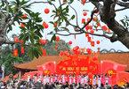 3 địa điểm tổ chức Ngày Thơ Việt Nam 2019