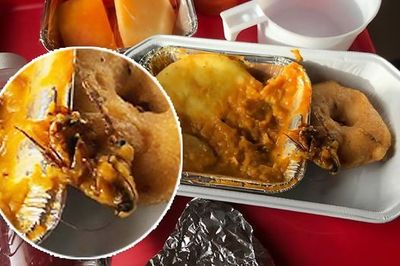 Chết khiếp: Gián nguyên con trong suất ăn trên máy bay
