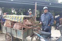 'Đệ nhất chợ lợn' ở Hà Nam