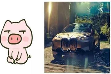 Biểu tượng của hãng xe sang 100 tuổi hóa ra giống mũi lợn