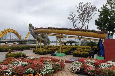 Check-in 'siêu độc' với Cầu Vàng ở Đường hoa bên sông Hàn
