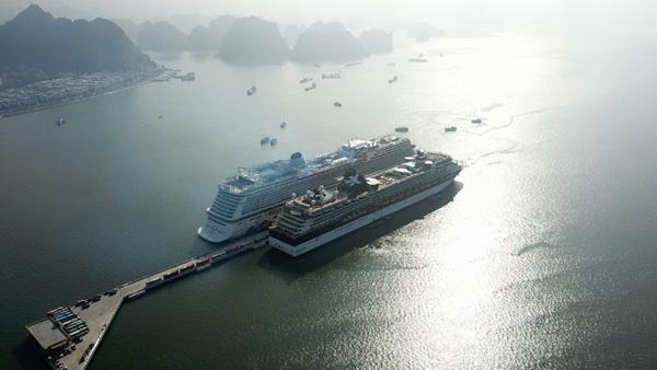 Hướng đi mới cho du lịch tàu biển ở Việt Nam