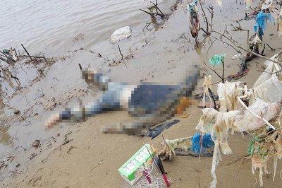 Thanh Hóa: Đi đánh cá phát hiện thi thể phụ nữ dạt vào bờ sông