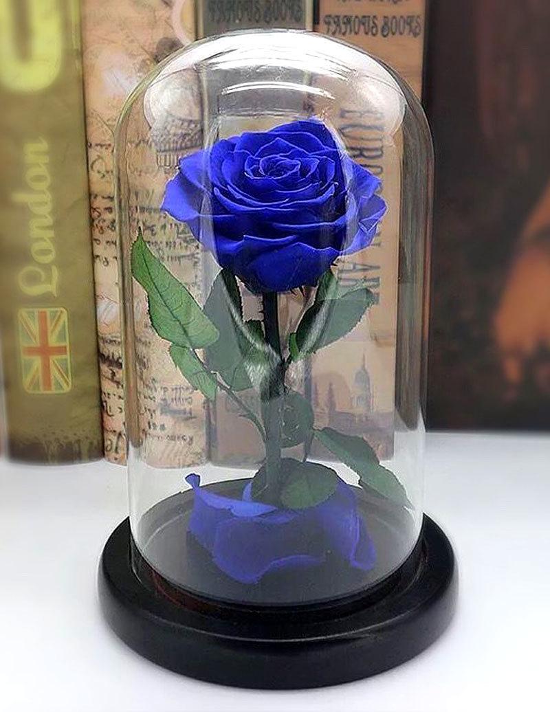 hoa hồng,valentine,hoa hồng bất tử,quà tặng Valentine