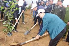 Chủ tịch Quốc hội tham dự lễ ra quân hưởng ứng Tết trồng cây