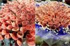 Dân châu Á 'phát cuồng' mốt tặng bó hoa bằng tiền