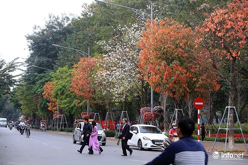 Quý cô Hà Thành xúng xính váy áo hiên ngang giữa phố chụp ảnh lá vàng