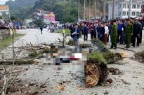 Danh tính nam thanh niên đi bộ bị cành cây gạo gãy rơi trúng tử vong ở Hà Giang